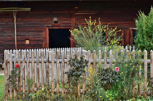 Maison en bois : 7 observations utiles pour construire votre maison en bois