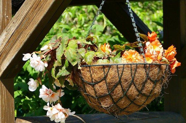 Les jardins suspendus : jardins verticals ou jardins suspendus, voici quelques idées